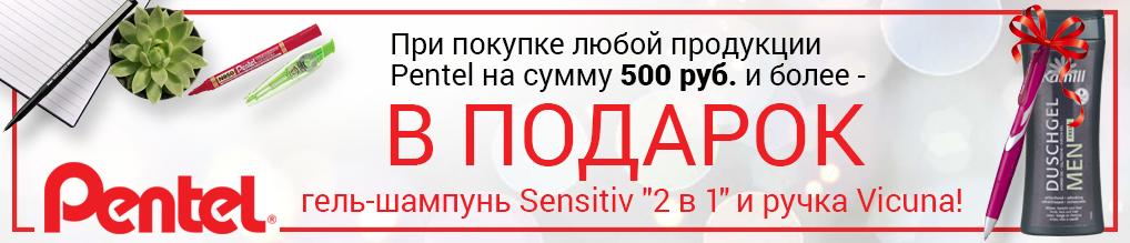 """При покупке продукции PENTEL на сумму более 500 руб. - гель-шампунь """"2 в 1"""" и ручка в подарок!"""